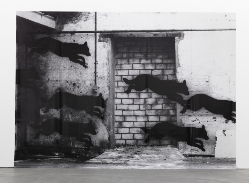 A large black-and-white photograph of spray-painted dogs in silhouette darting across a wall with a brick opening