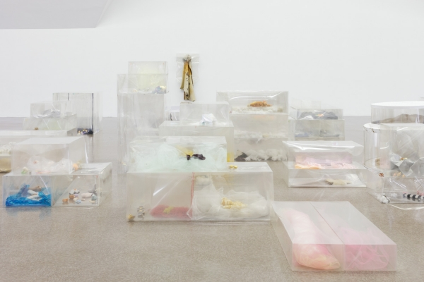 Clear mylar boxes containing stuffed toys, rat skins, and textile, paper and plastic miscellany