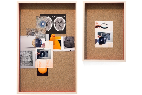 On two corkboards, collages of vivid color photographs--of tree bark, brain scans, oranges, miscellaneous materials