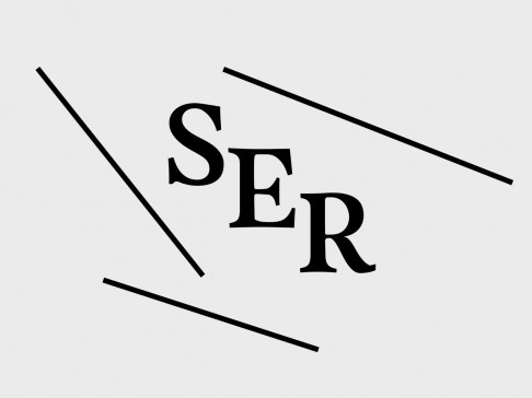 Black serif letters S, E, R angle diagonally downwards along three straight black lines along a platinum background