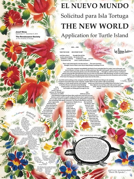The New World  Application for Turtle Island  poster